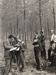 Illustrazione dei risultati conseguiti in un pioppeto sperimentale ad un gruppo di visitatori belgi